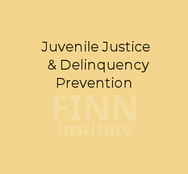 juvenile justice and delinquency prevention